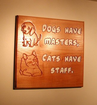 Dogs have masters, Cats have staff.