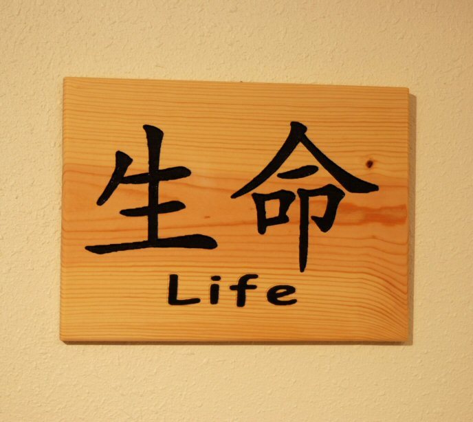 Life Chinese Symbol